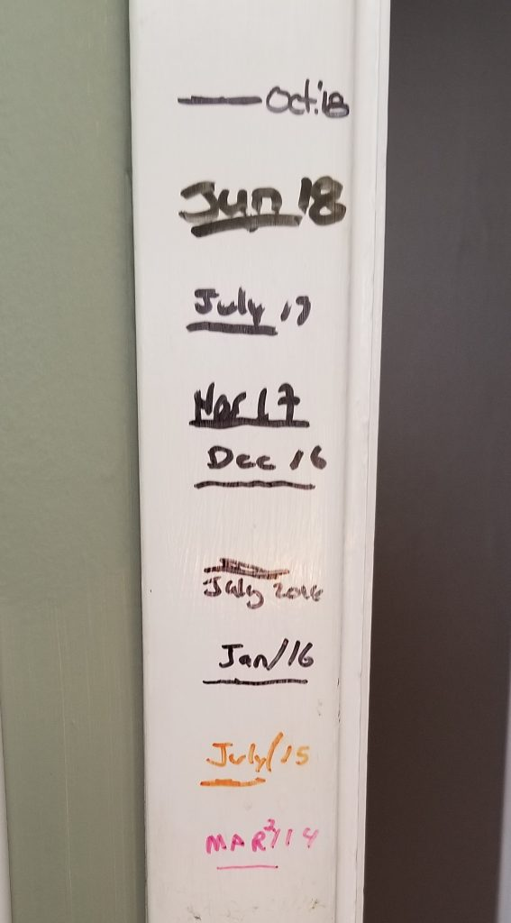 My son's growth chart is his life's journey