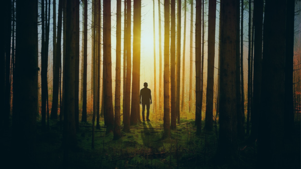 Man alone in the darkness of the woods